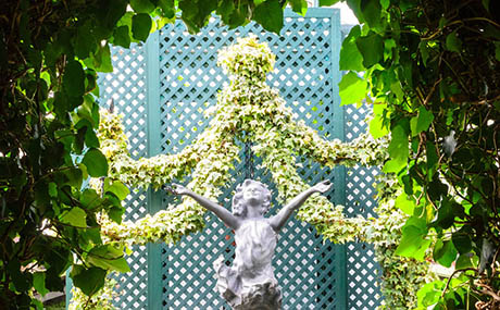 Inspiration decor flowers plants statue
