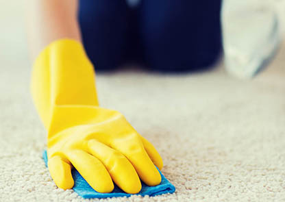 Advice clean hotel localised cleaning