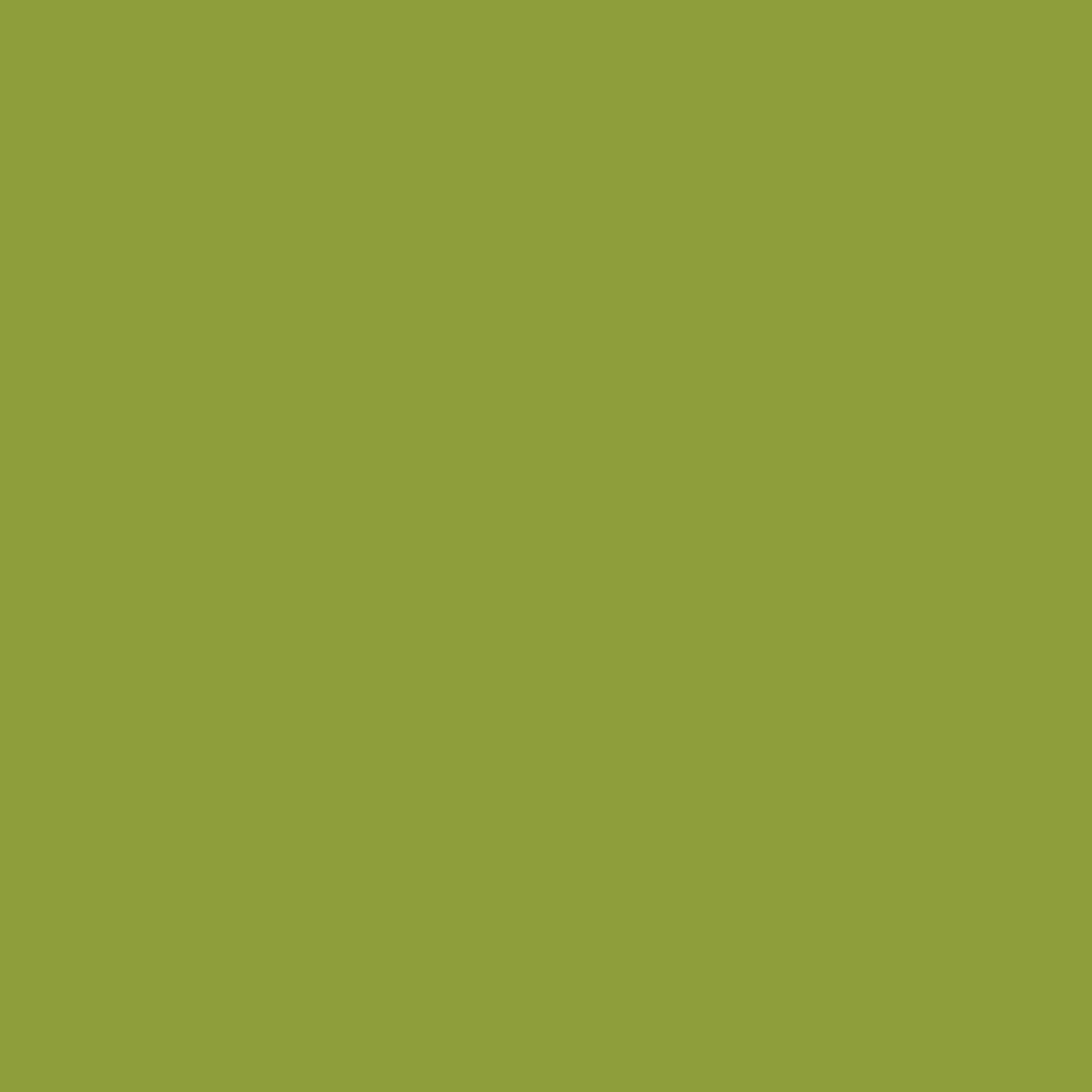 couleur-kiwi.jpg