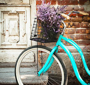 Inspiration decor flowers bicycle blue